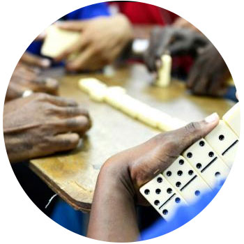 National Association of Domino Player